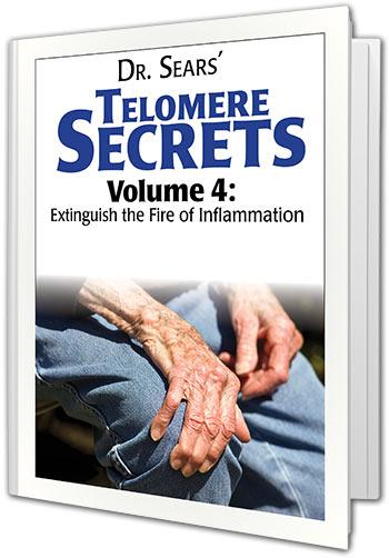 telomere-secrets-volume-4